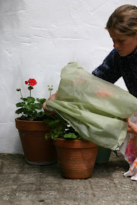 Small Easy Fleece Jackets - Easy to wrap container plants
