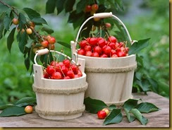 Cherries-fruit-1201889_1024_768