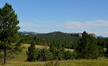 beautiful Black Hills