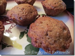 applesauce muffins - The Backyard Farmwife