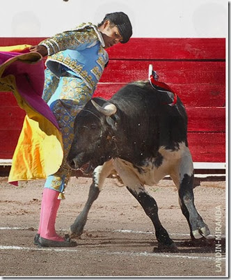 TOMAS MARTINEZ AGUASCALIENTES 2013 4 (1)