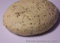 sprouted-einkorn-bread 013