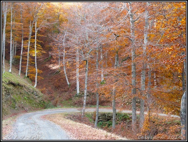 Lantz otoño 069