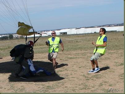 skydive 164