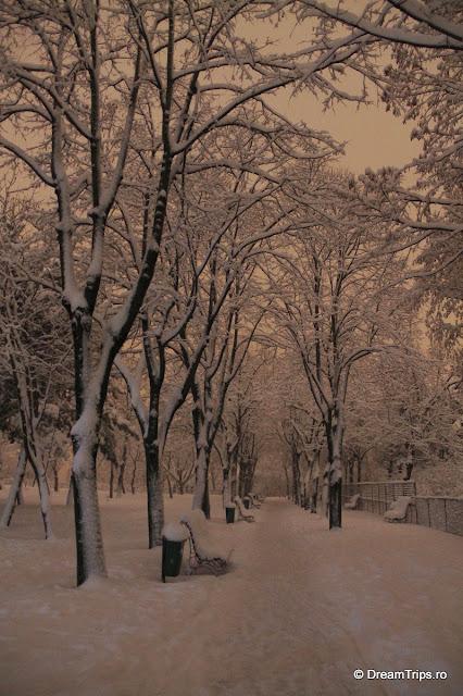 Noapte_de_iarna_1957.JPG
