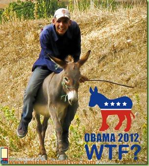 bo donkey two ways-wtf copy