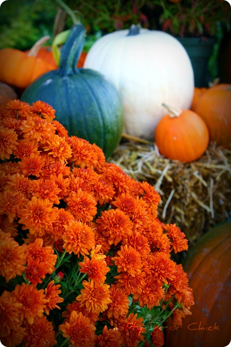 Easy Fall Ideas For The Porch From Thrifty Decor Chick