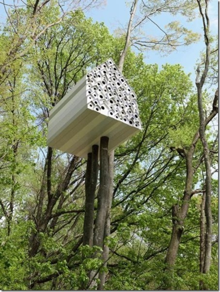 awesome-treehouses-12