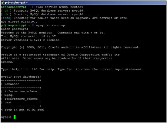 Mysql database on Raspberry Pi
