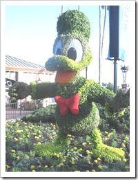 Florida vacation Epcot topiary donal duck