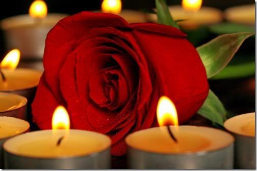 para san valentin rosas y flores (13)