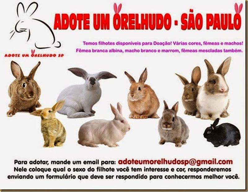 adote_um_orelhudo_thumb[1]