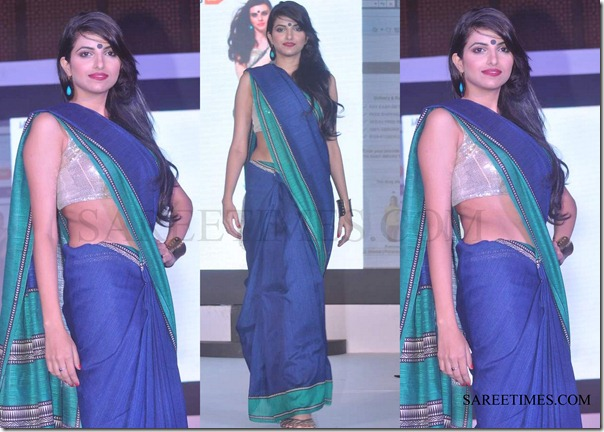 Traditional_Saree