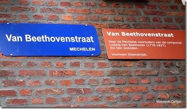 ベートーヴェンの祖父はこの辺りに住んでいたという Van Beethovenstraat