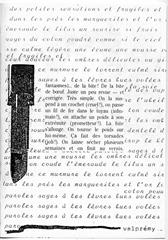 Le nerf des marguerites (LPDA 036, 25 avr 85).jpg
