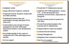 SAP CRM RDS Consideraciones