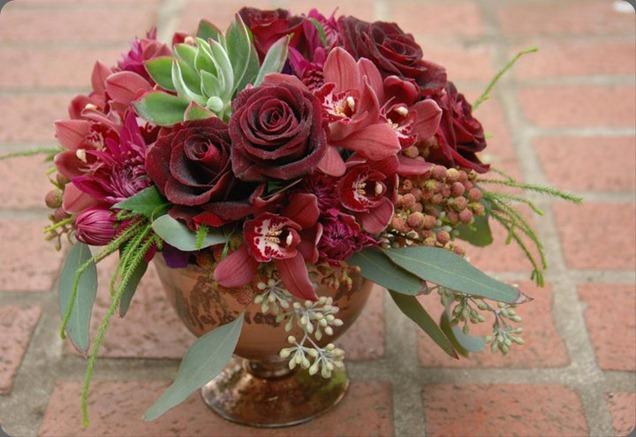 156358_180780728614515_159860124039909_618332_1241496_n  seed floral