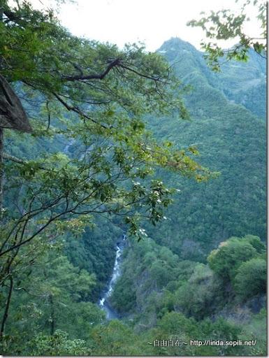 司馬庫斯部落-傳說中的神秘谷