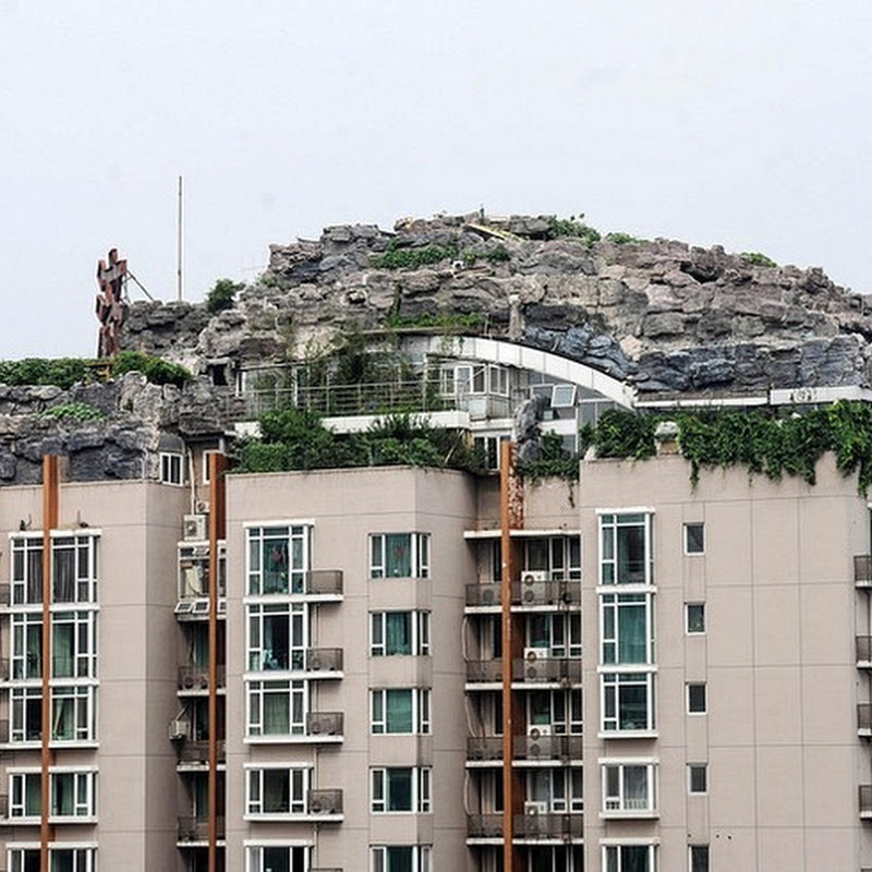 Chinese Professor Builds Mountain Villa on Top of Apartment