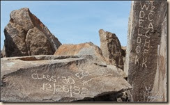 New petroglyphs