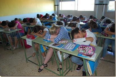 carteless aula (3)