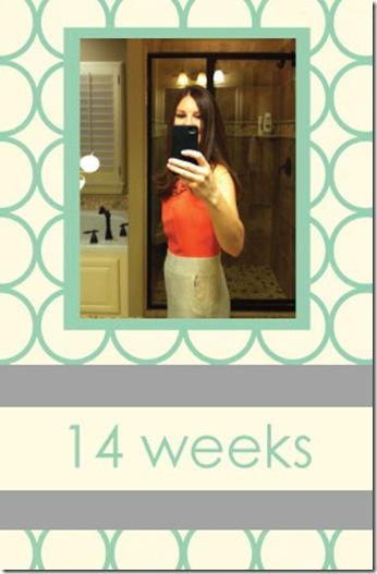 14-weeks
