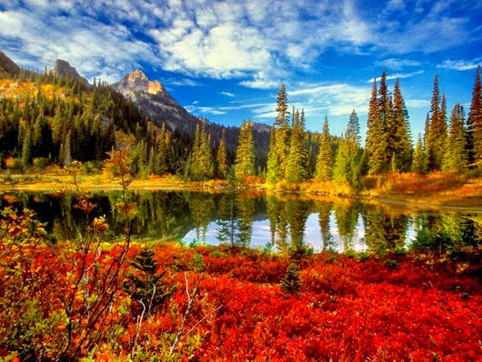14_autumn