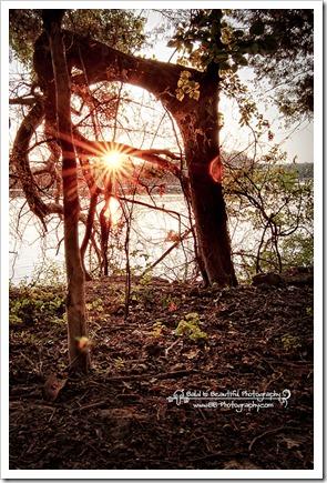 Pooles Knob Sunrise_-5