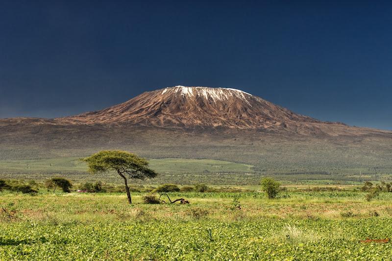 Voyage de noce en Tanzanie