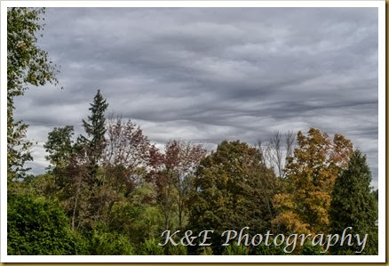 Fall 2013 (11 of 33)