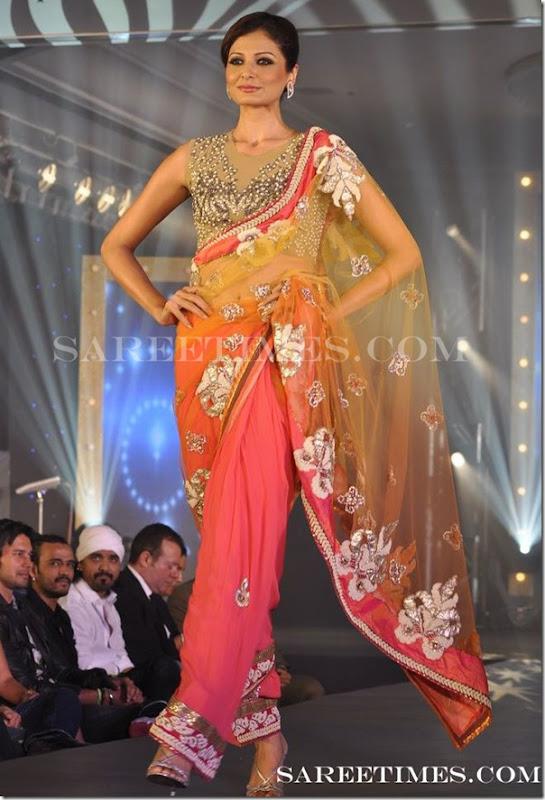 Designer_Shimmer_Saree_Gitanjali_Show