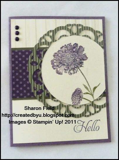 SQSC023_Sharon_Field_Field_Flowers_Elementary_Elegance