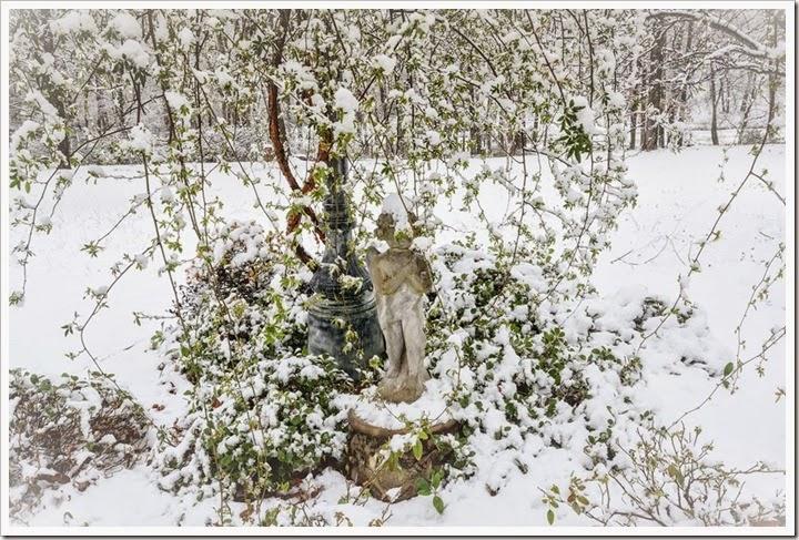 snow-2-25-15-1-6FB