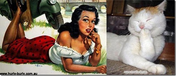 cats-pinup-models-16