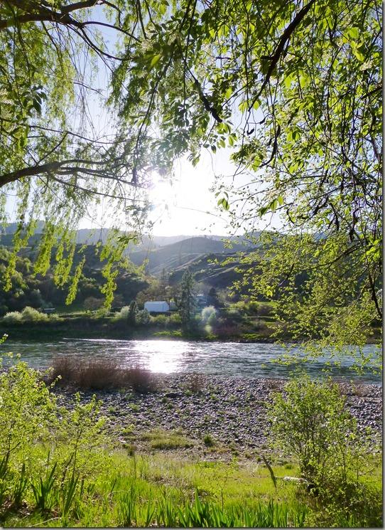 salmon river 018