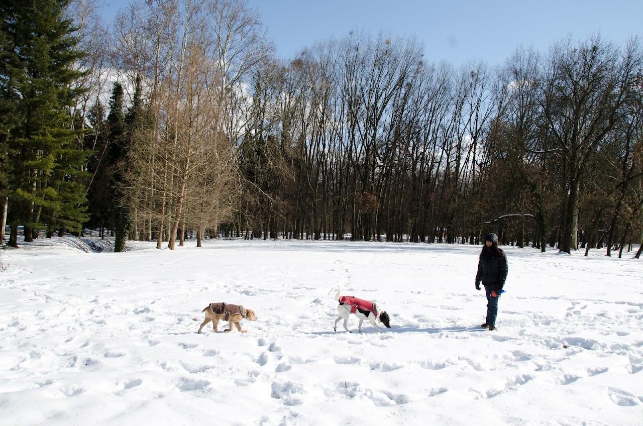 Us at Maksimir Park