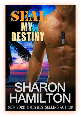 seal my destiny - cover photo