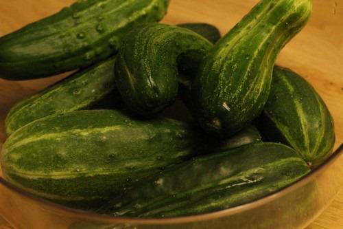 refrigerator-pickles_0001