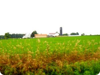 13-farm
