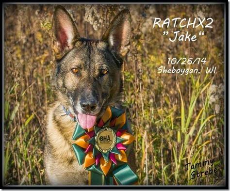 Jake RATCHX2