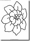 fiore_fiori_176