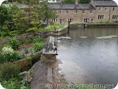 mill pond 1