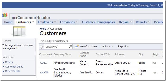 Unchanged custom user control replacing the default header text.