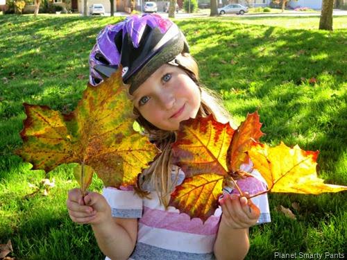 Fall-Leaves-Portrait