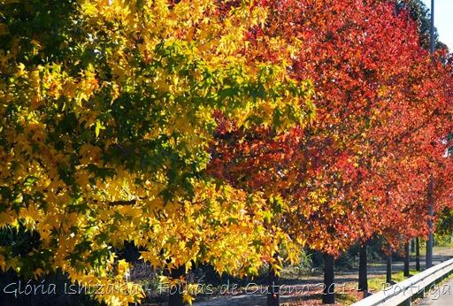 Glória Ishizaka - Folhas de Outono 11
