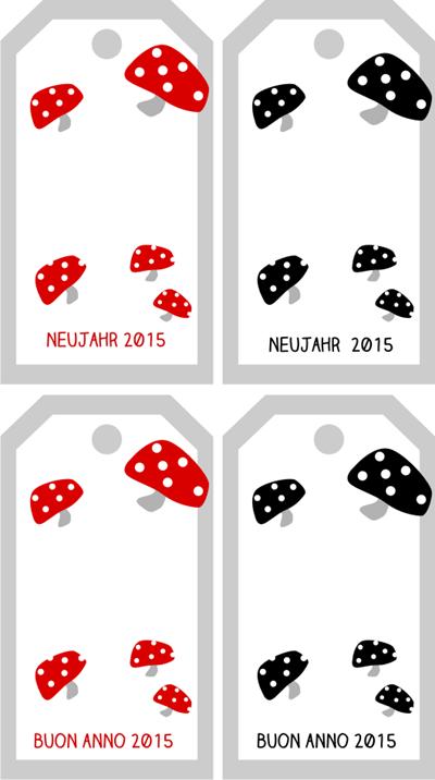 Fliegenpilz_2015
