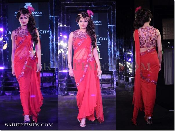 Arjun_and_Anjalee_Kapoor_Designer_Sarees (3)