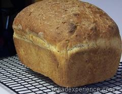 einkorn-oatmeal-bread 035