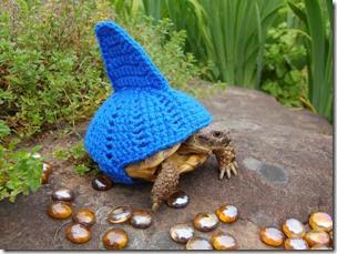 cosasdivertidas tortugas con ganchillo (7)