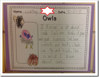 Owl Writing1